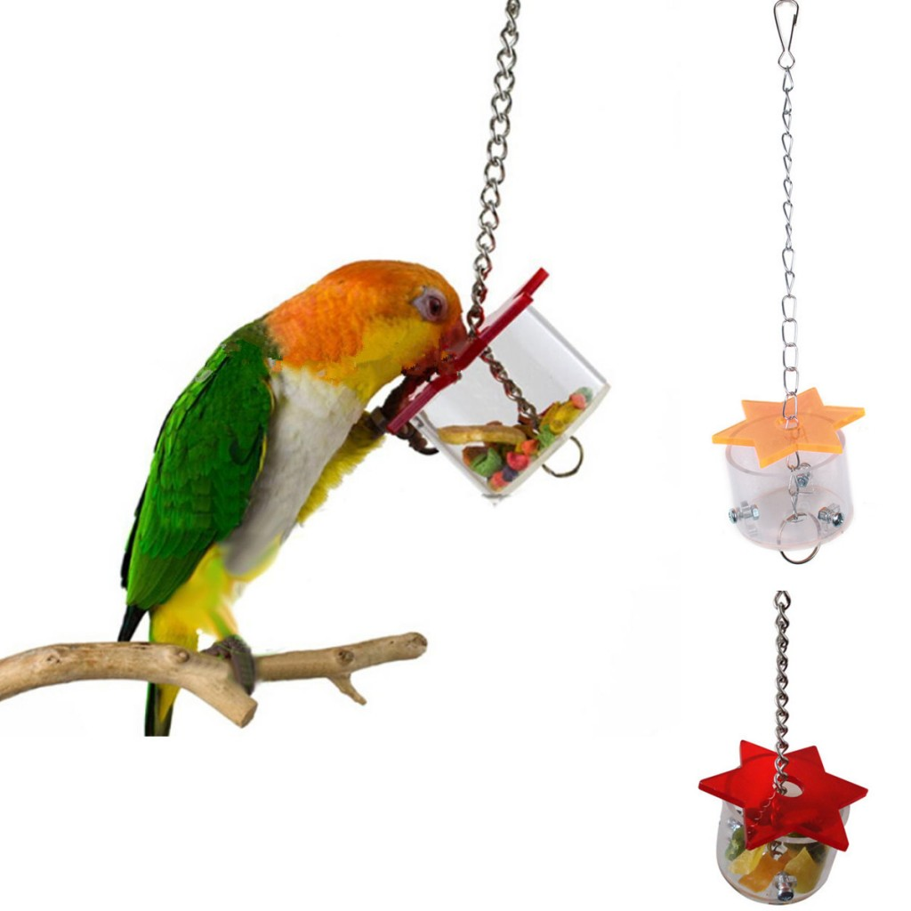 A madarak etetése2