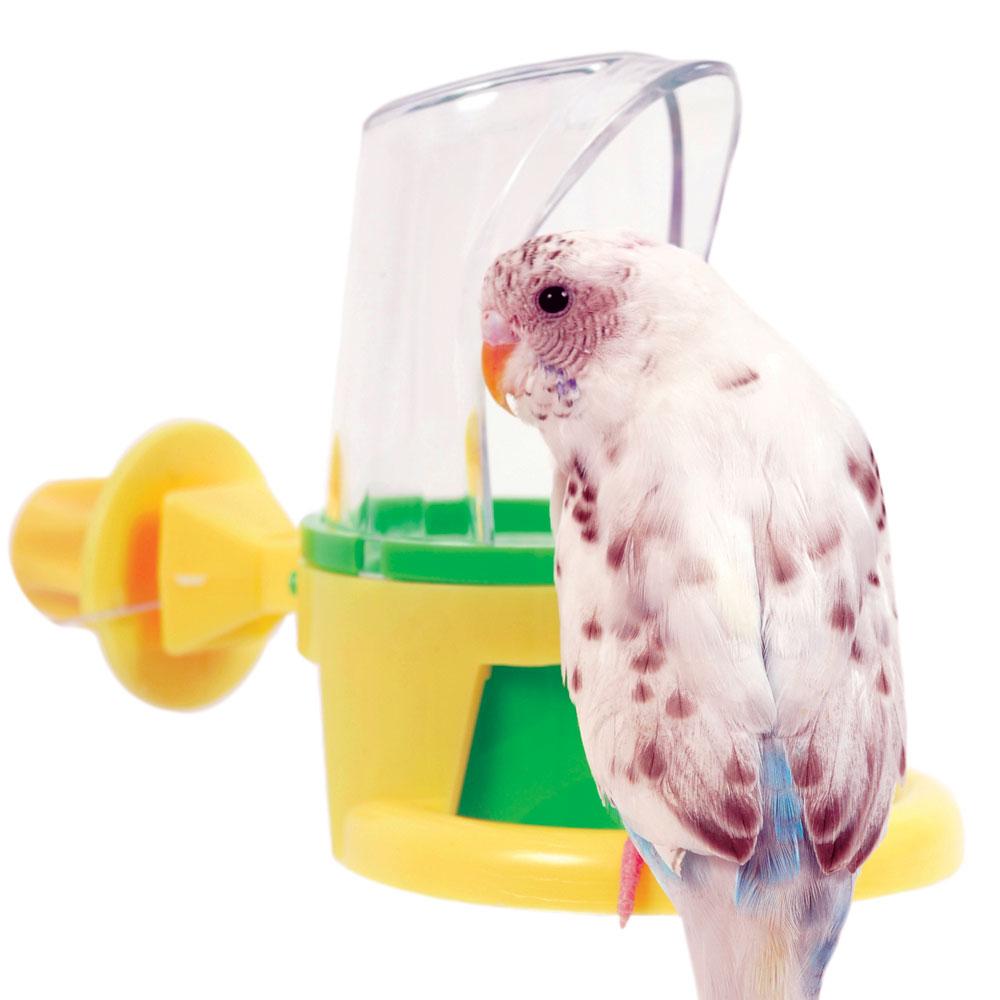 A madarak etetése3